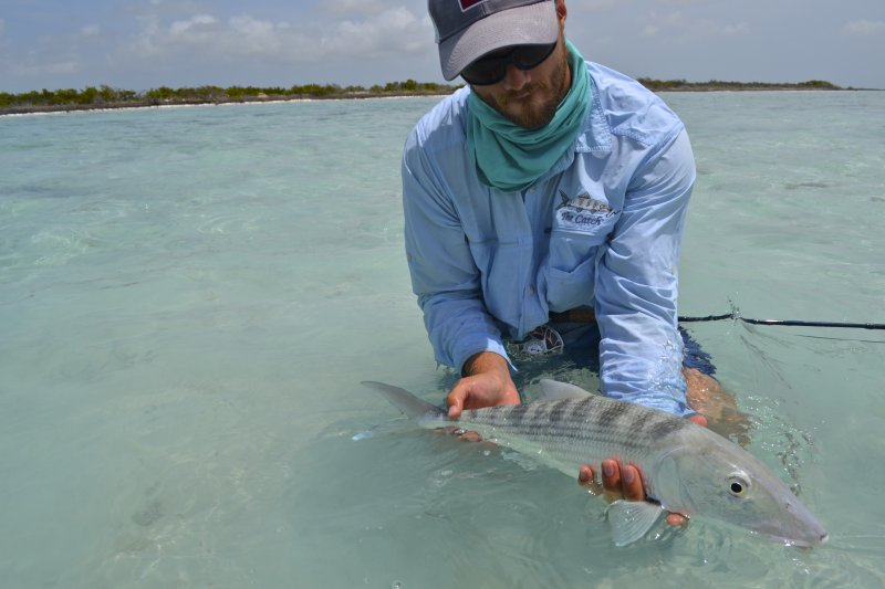 Turks and caicos bonefishing archives bonefish unlimited for Turks and caicos fishing charters