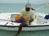 Turks and Caicos Conch