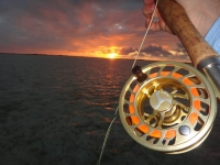 Fly Fishing Guide Turks and Caicos