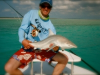 Shark Turks and Caicos